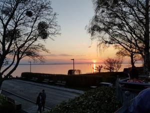 Sonnenuntergang am Bodensee in Langenargen