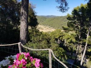 Mallorca Es Capella