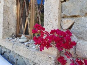 mediterranes Flair auf Mallorca